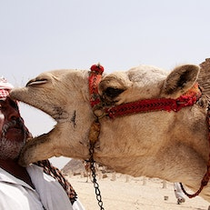 Great Pyramid of Giza Camel Tours