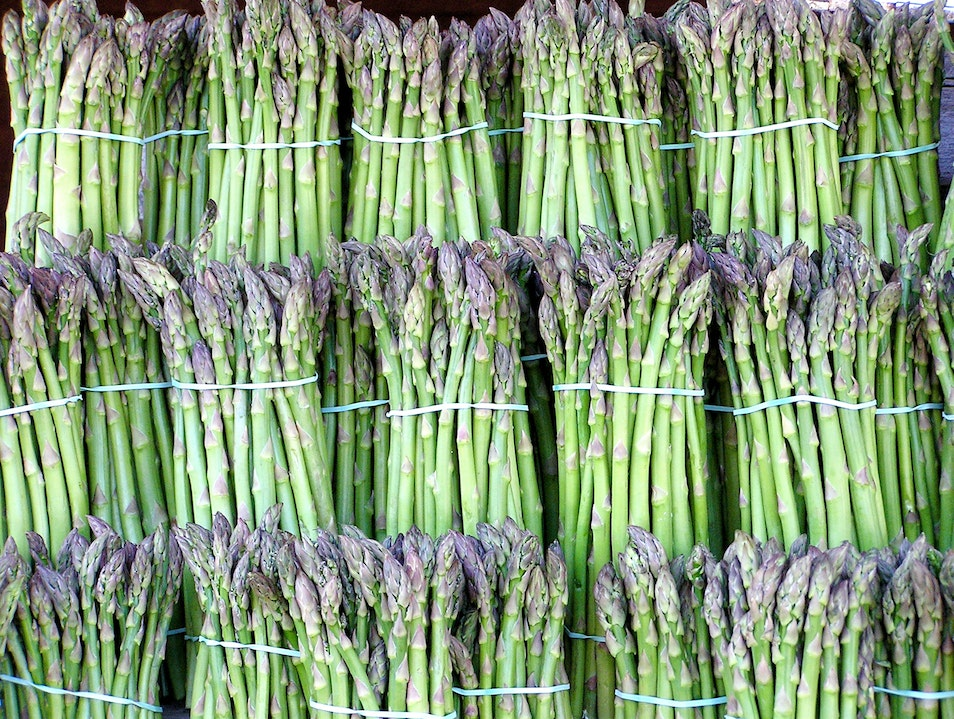 Asparagus Season in Germany Berlin  Germany