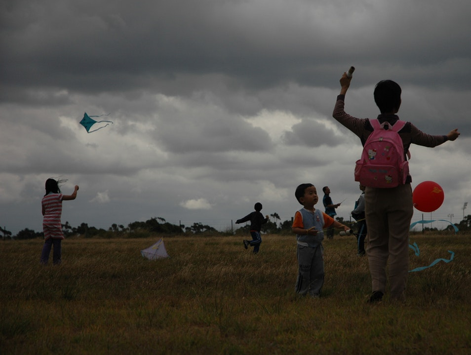 Go Fly (or Rather, Buy) a Kite!