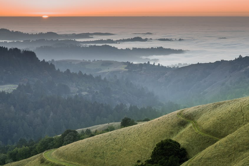 Local Getaways: The Santa Cruz Mountains Offer a Much-Needed Escape to Nature