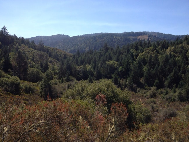 Hike Calistoga