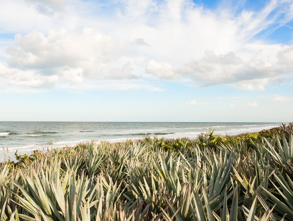 Discover secluded beaches and backcountry Volusia Florida United States