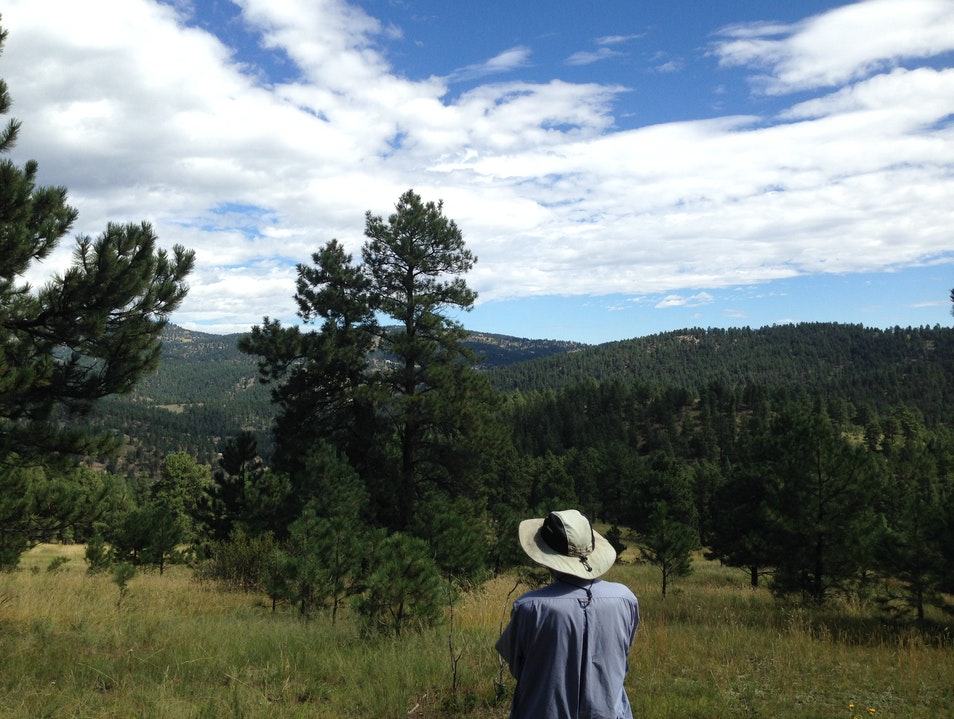 A Private Hike Evergreen Colorado United States