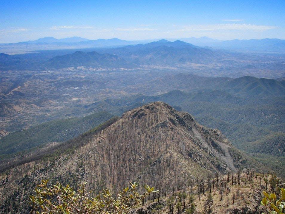 From the Highest Point Between Tucson and Mexico: A Hike up Mount Wrightson Patagonia Arizona United States