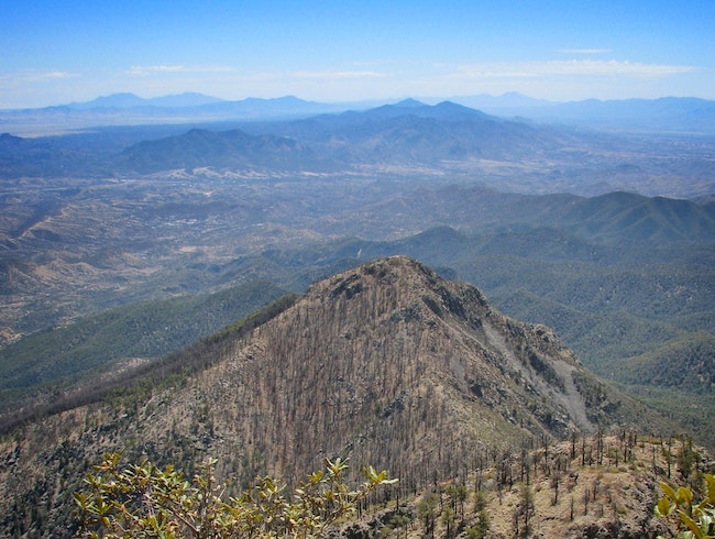 From the Highest Point Between Tucson and Mexico: A Hike up Mount Wrightson