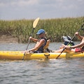 Barrier Island Eco Tours Dewees Island South Carolina United States