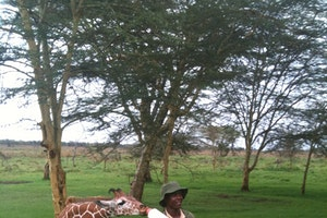 East Africa, Lewa Conservancy