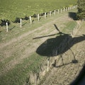 Vineyard Helicopter Tour Rapaura  New Zealand