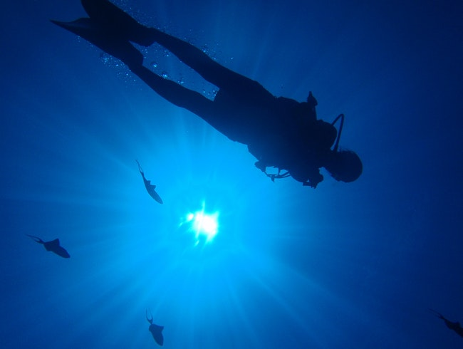 Scuba Diving in the Marianas Islands