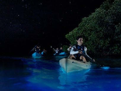 Kayaking in the Bioluminescent Bay Fajardo  Puerto Rico