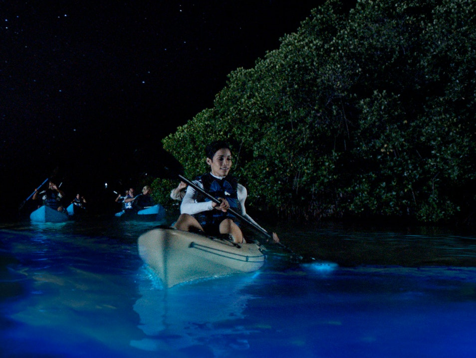 Kayaking in the Bioluminescent Bay