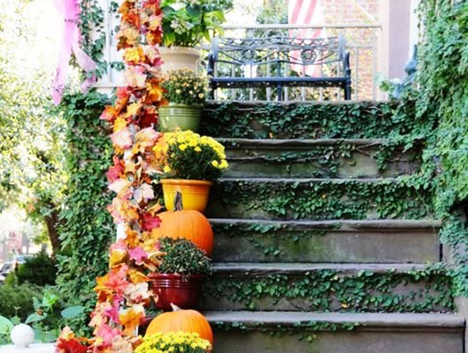 Savannah Dressed Up for Fall