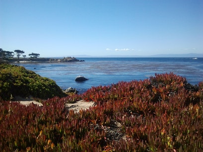 Monterey Peninsula Recreational Trail Pacific Grove California United States