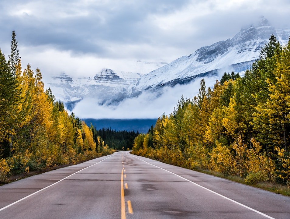 Fall Colours in the Canadian Rockies Improvement District No. 9  Canada