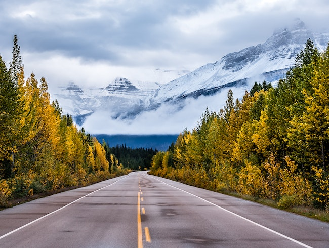Fall Colours in the Canadian Rockies