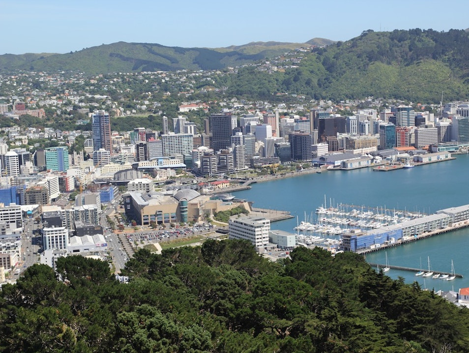 Take in the Views from Mount Victoria Wellington  New Zealand