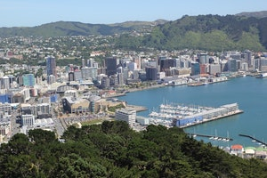 10 things to do in wellington