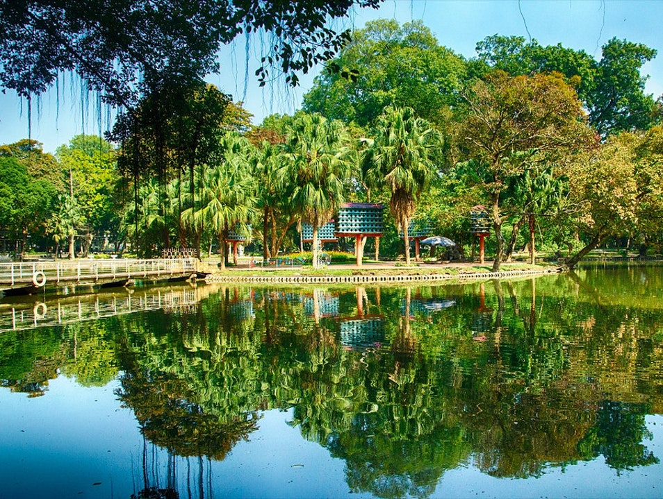 Enjoy the Silence at Hanoi Botanical Garden Hanoi  Vietnam