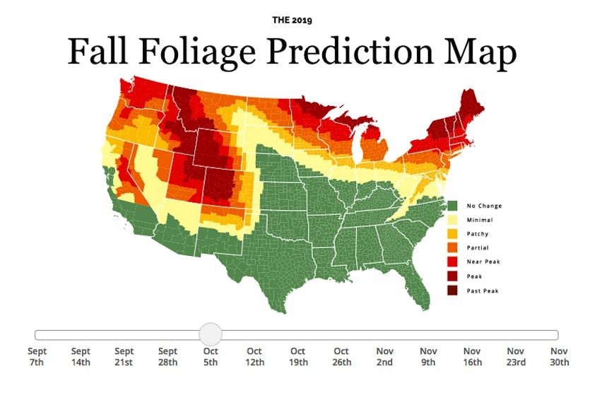 Fall Foliage Prediction Map 2019: Here's When to Expect Peak ... on pitchers of the map of new mexico, mapquest hobbs new mexico, online map of new mexico, large map of new mexico, show me a map of new england, ma new mexico, show me a map texas, show me a map of new york, atlas map of new mexico, show state of new mexico on map,