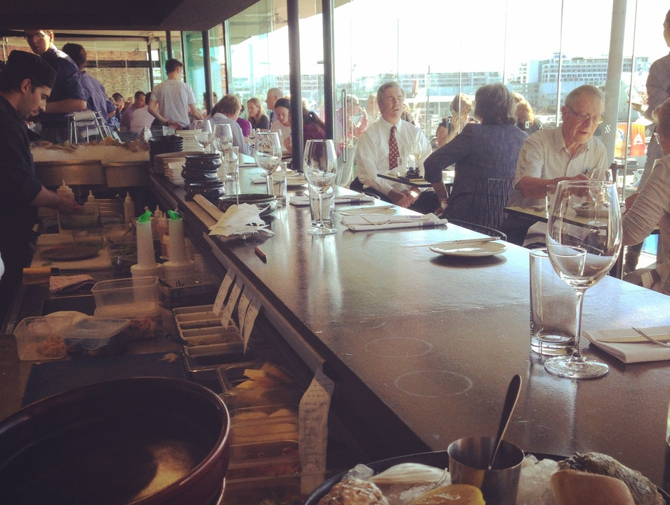 Harbor Views and Delicious Seafood at Ostro Auckland  New Zealand