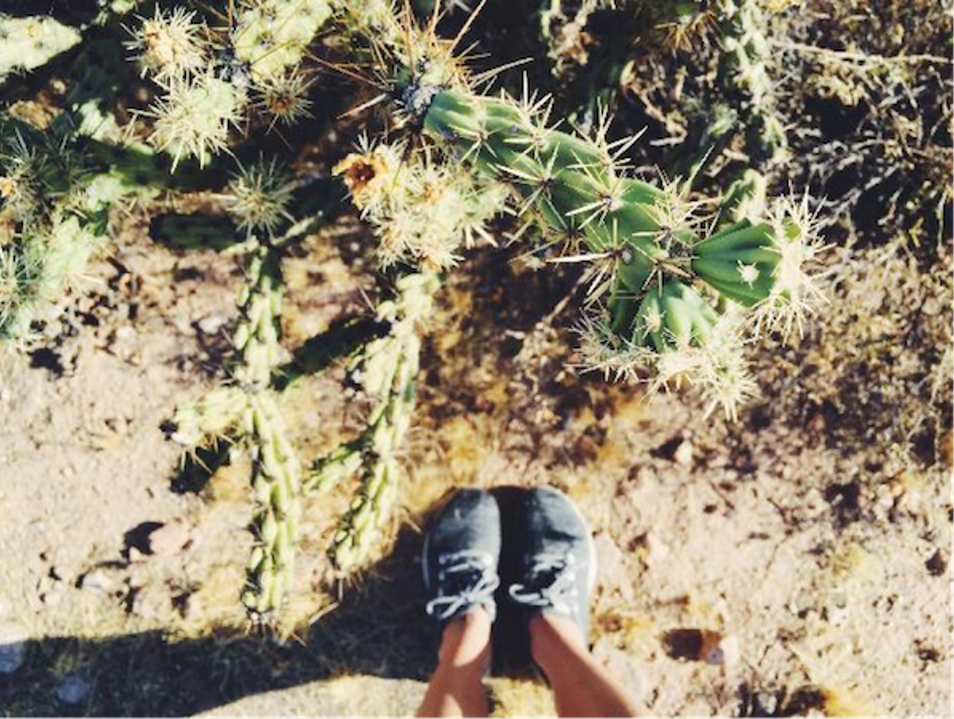 Let Arizona Outback Adventures Be Your Guide