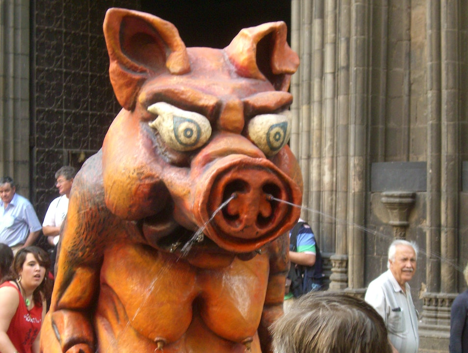 Watch where you point that pig! Barcelona  Spain