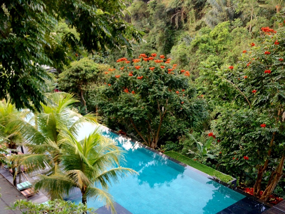 Swim in an Infinity Pool all day for under $8 Tegallalang  Indonesia