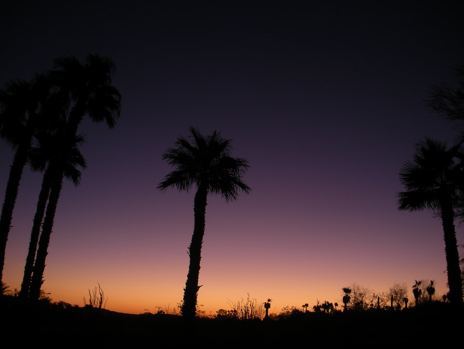 Excellent star gazing in Borrego Springs, CA Borrego Springs California United States