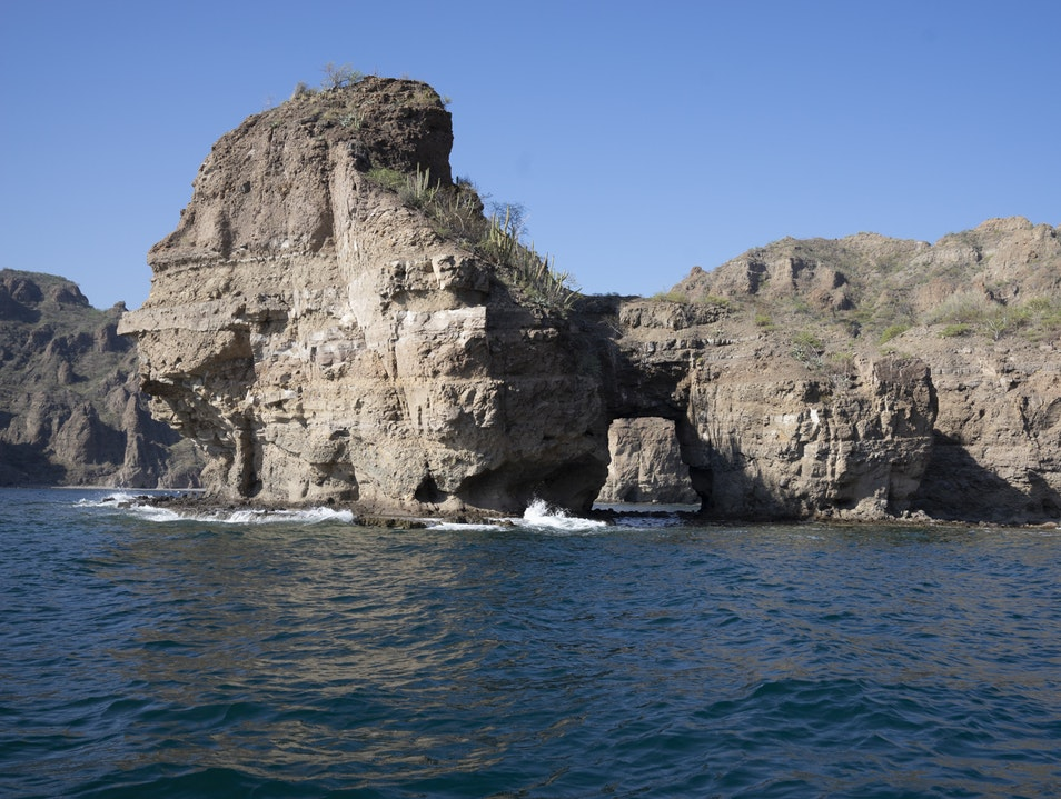 Visit the World's Aquarium Loreto Municipality  Mexico