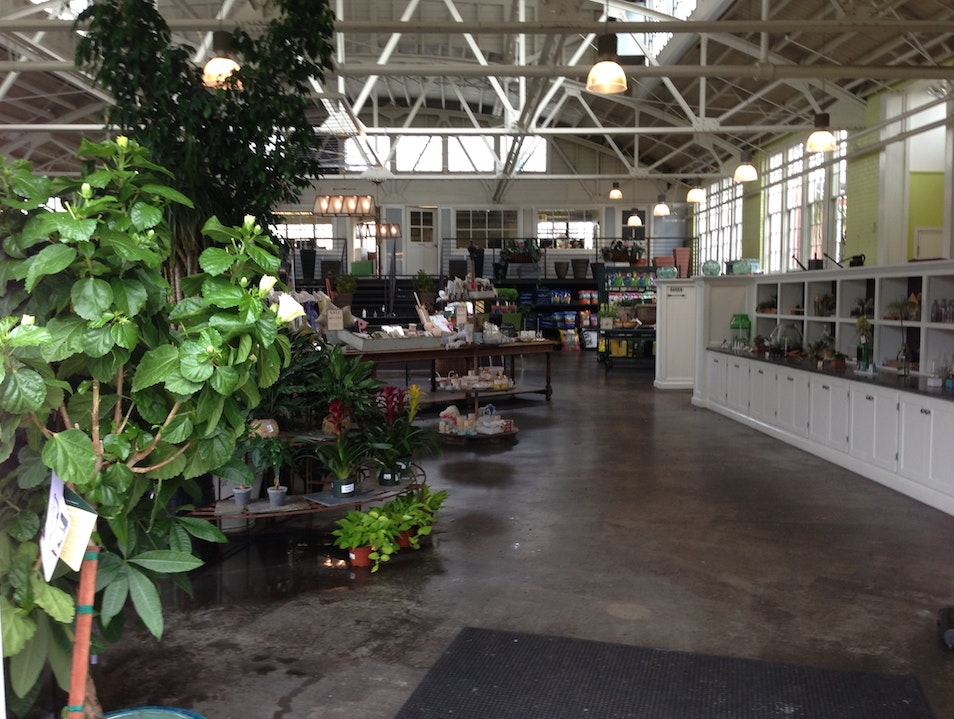 From Warehouse to Nursery and Cafe
