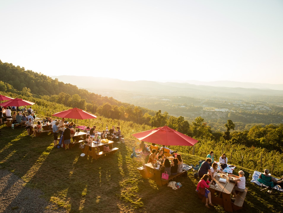 Family Fun and Food With a View Charlottesville Virginia United States