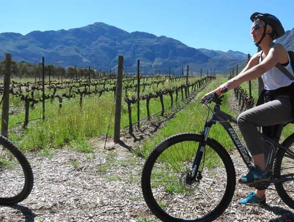 Cycle Safari - Bike Riding and Wine Tasting in the Franschhoek Winelands Franschhoek  South Africa