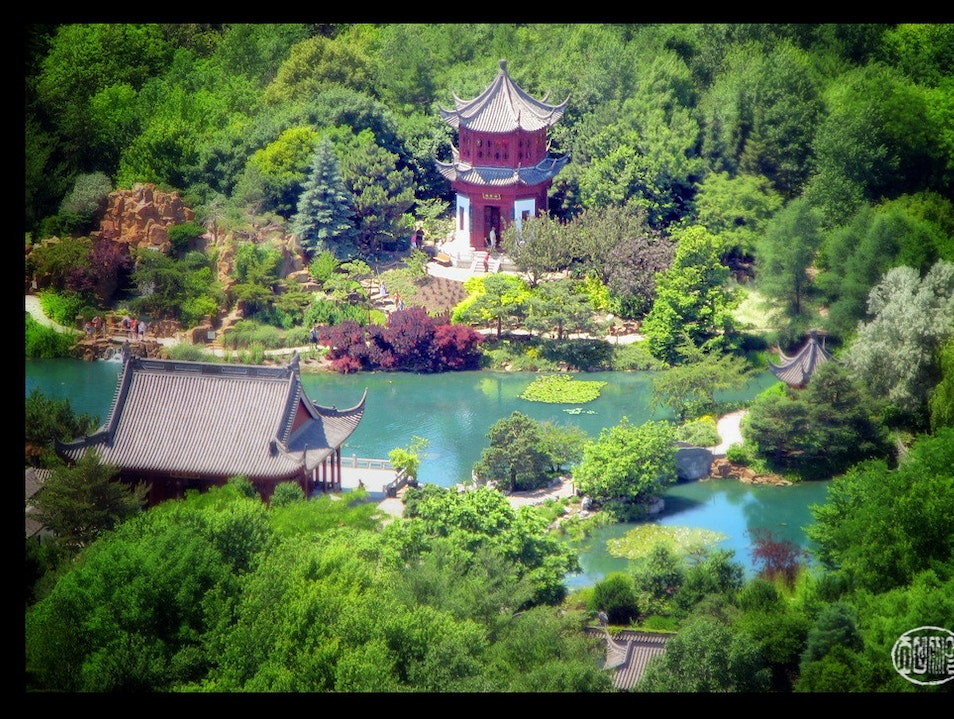 from the top of the leaning tower, a view of a Chinese garden Montreal  Canada