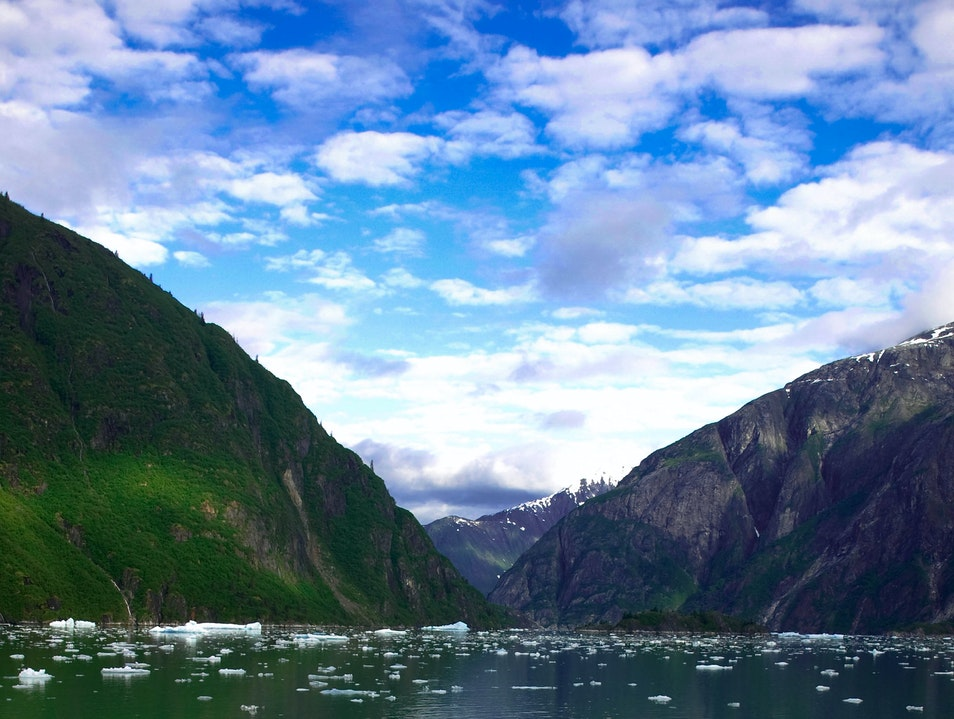 Tracy Arm Elfin Cove Alaska United States