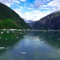 Tracy Arm Fjord Elfin Cove Alaska United States