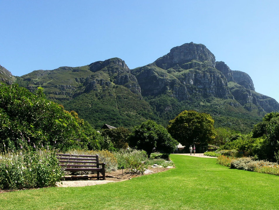 Beaches and Botanical Gardens in Cape Town