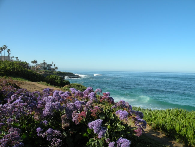Leisurely stroll along part of the beautiful San Diego coastline