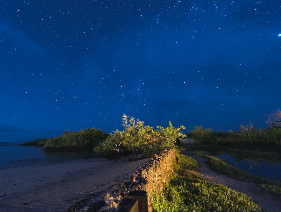 Explore the Night Skies at Finch Bay Puerto Ayora  Ecuador