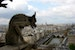 Gargoyles on Notre-Dame with the Eiffel Tower in the background.