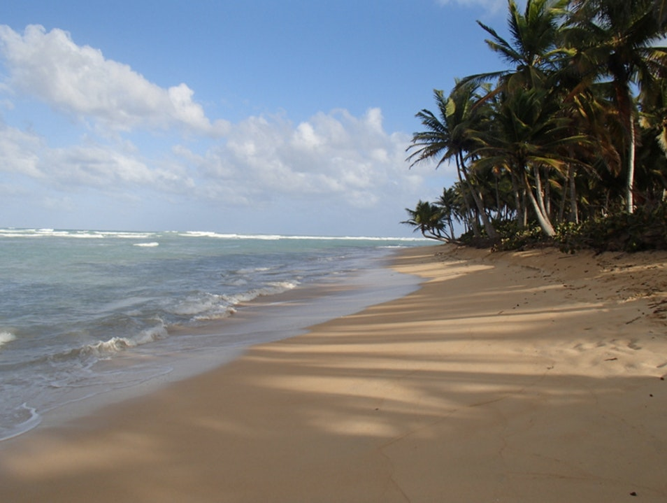 The Raw Beaches of Punta Cana  Punta Cana  Dominican Republic