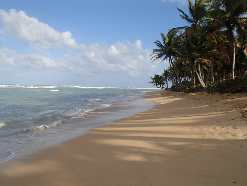 The Raw Beaches of Punta Cana