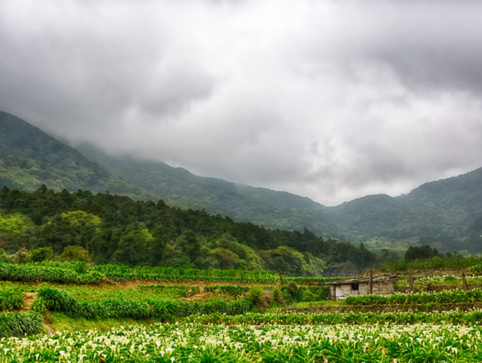 Escape to Yangmingshan Beitou District  Taiwan