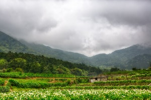 The Unique Natural Beauty of Taiwan