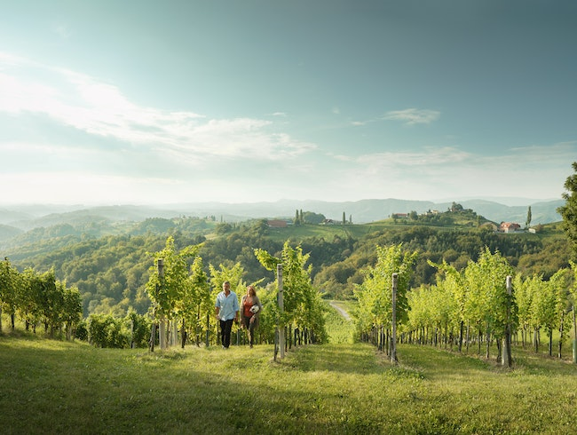 Austria's Southern Wine Country
