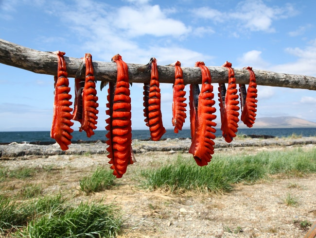 The Art of Drying Salmon