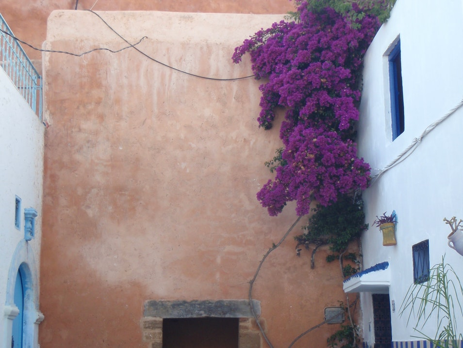 Back Alley Beauty Rabat  Morocco