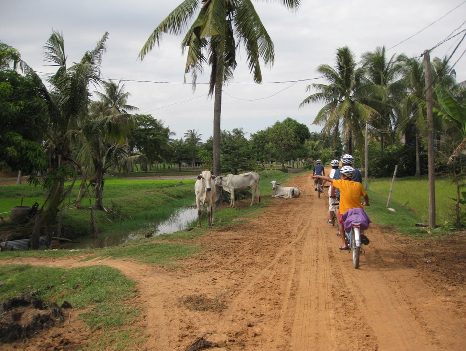 Grasshopper Adventures' Bicycle Tours Siem Reap  Cambodia