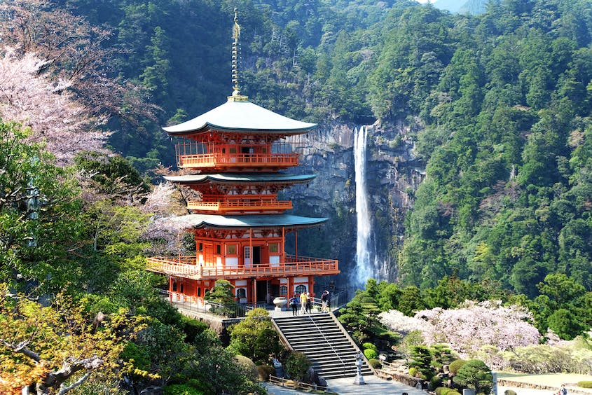 Going Inward: A Guide to Japan's Temple Lodgings for Travelers Seeking Solitude