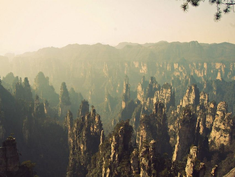 The Peaks of Zhangjiajie Zhangjiajie  China