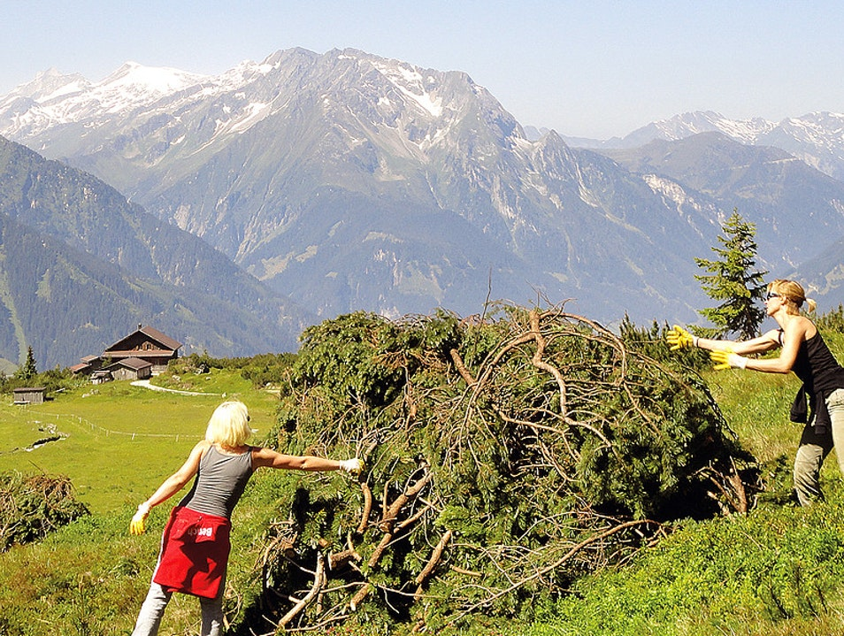 Volunteering in the High Alps Nature Park Zillertal Alps Gemeinde Ramsau Im Zillertal  Austria